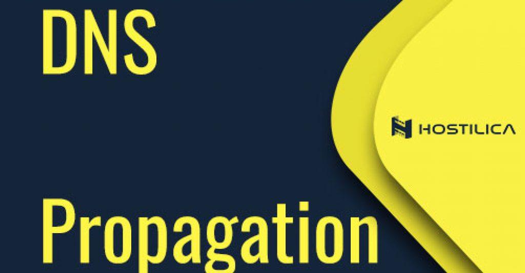 DNS-Propagation